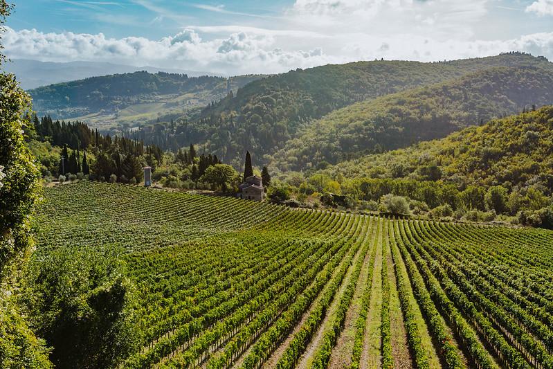 chianti winery tour